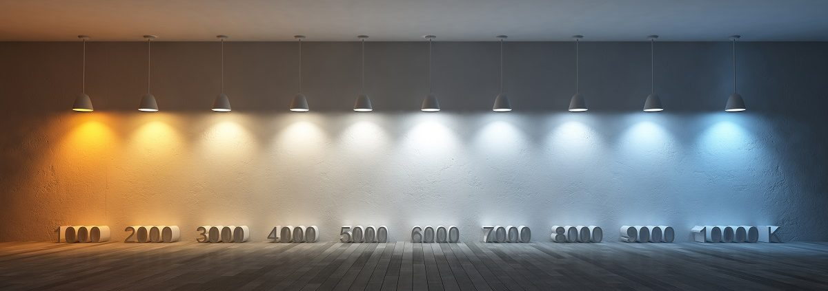 What Are Warm White, Soft White, Cool White, And Daylight Light Bulbs? Images