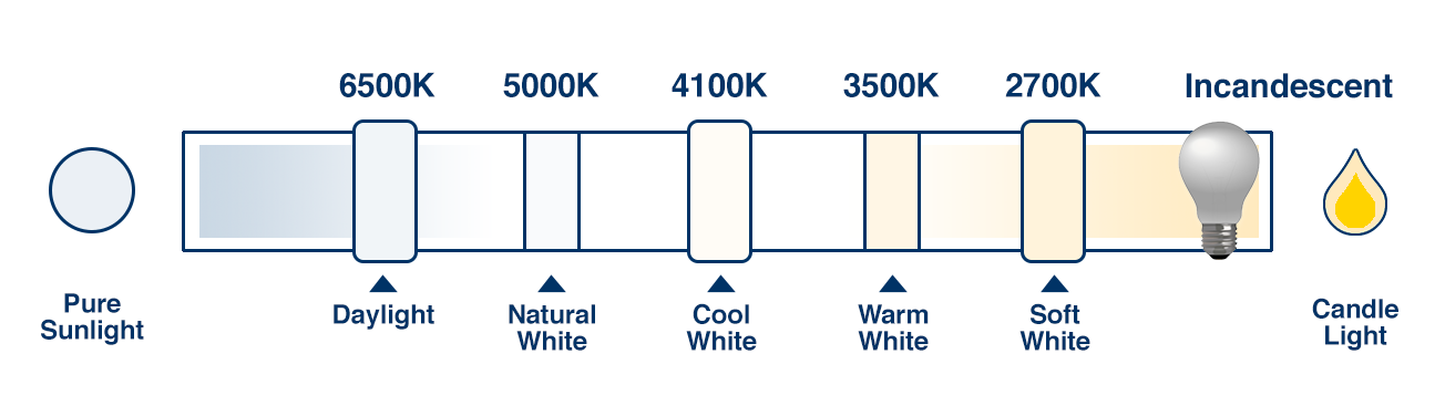 What are Warm White, Soft White, Cool White, and Daylight ...